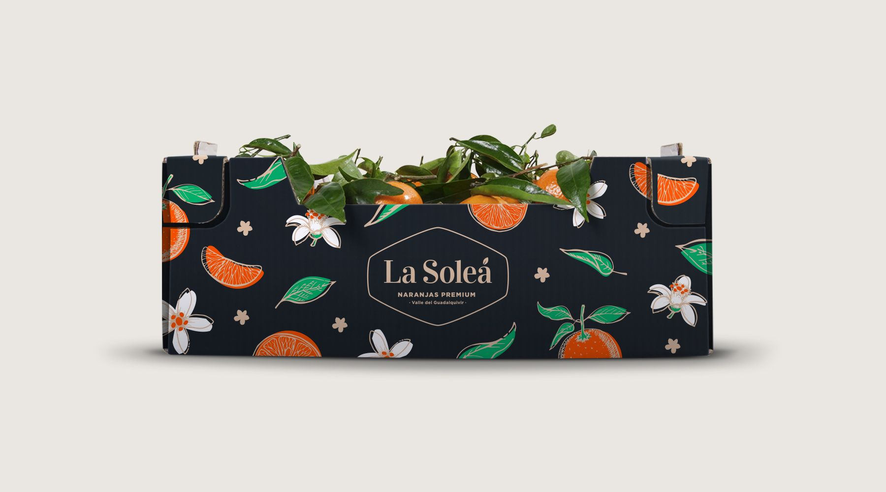 Cardboard box of oranges La Soleá